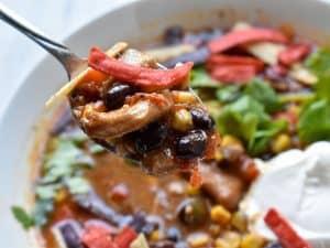 Instant Pot Chicken Tortilla Sou