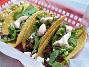 mushroom tacos in a corn tortilla